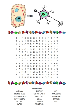 NTScience Word Search